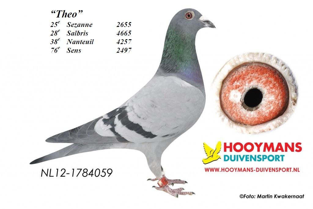 12-059-Theo-groot-1024x682