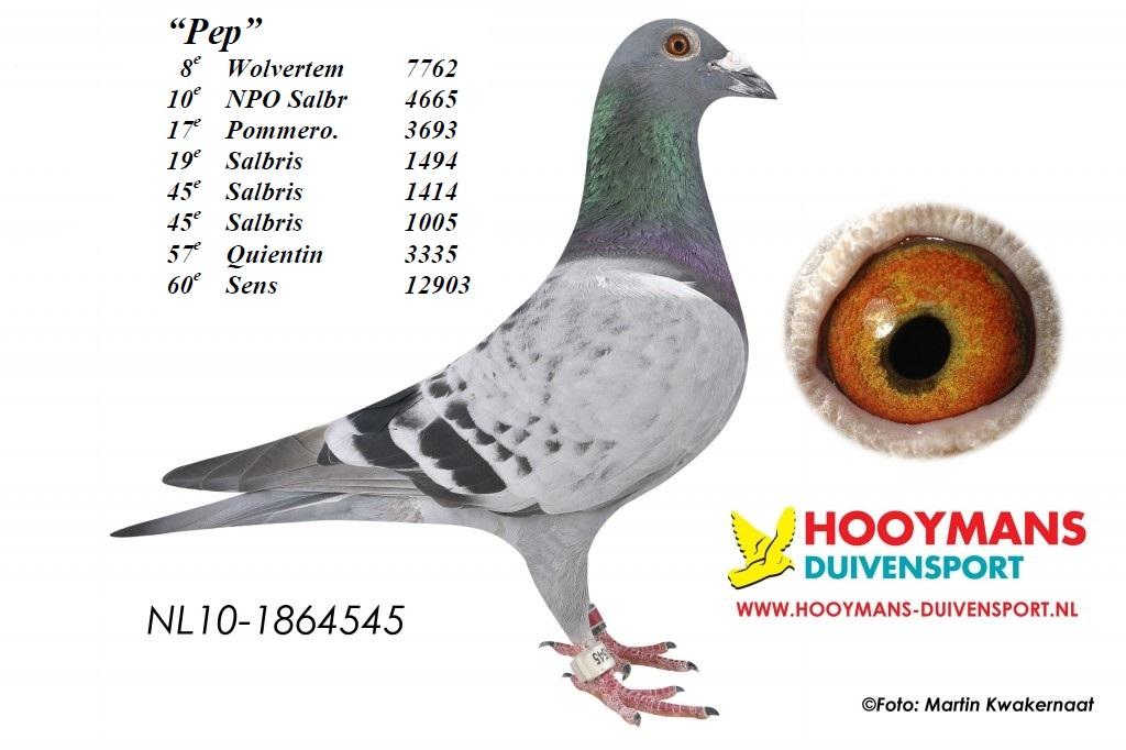 pep 10-545-1024x682